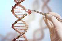 Intellia Therapeutics to Present New Preclinical Data from Its CRISPR/Cas9 Programs at the 23rd Annual Meeting of the American Society of Gene and Cell Therapy