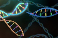 Focus Feature on Gene Editing: Catching up on CRISPR