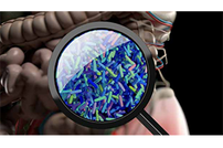 Betting on the Bug, Part III: Leveraging the Microbiome to Generate New Models