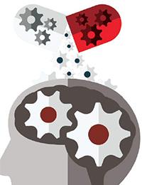 The Brain: The Decade Ahead
