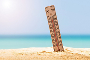 A model summer: Preclinical research developments rise with the temperature
