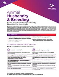 Animal Husbandry & Breeding Flyer