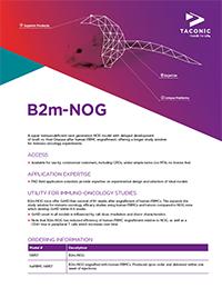 B2m-NOG Flyer