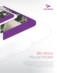 B6 Albino mouse models