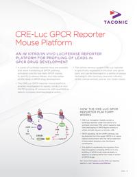 CRE-Luc GPCR Reporter Platform