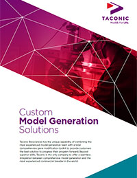Custom Model Generation Solutions