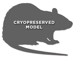 hTH-GFP (Autosomal Insertion) Cryopreserved Rat Model
