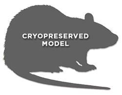 Pirc ENU-induced mutant Rat Model