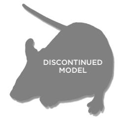 Tau (Model 1638) Random Transgenic Mouse Model