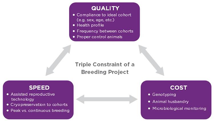 animal model breeding plan constraints