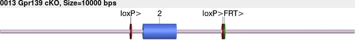 7899cko-allele.png