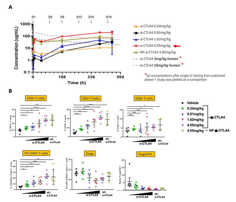 Immunophenotyping and anti-CTLA4 human immune response in huNOG-EXL mice