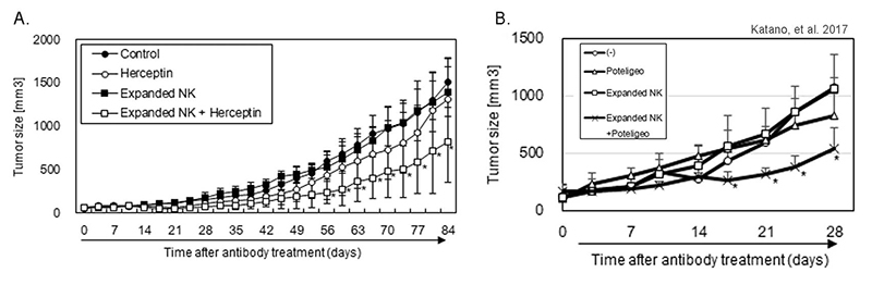 In vivo antibody-dependent cell-mediated cytotoxicity (ADCC) activity human NK-cell engrafted hIL-15 transgenic NOG
