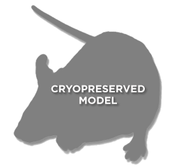 generic cryopreserved mouse