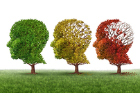 photo from Targeting APOE4 for Alzheimer's Disease Therapies