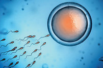 photo from Introduction to Embryo Cryopreservation