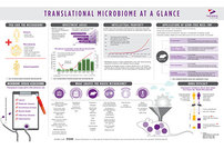 photo from Introduction to Translational Microbiome Research Infographic