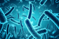 Bacteria Making Headlines in 2018