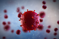 Modeling Stem Cell Transplantation Treatments for HIV