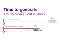 photo from Build or Buy: Animal Model Licensing in the Age of CRISPR