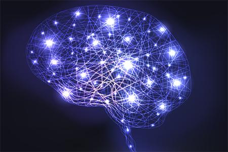Brain Connections Neurons