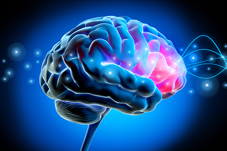Brain with pulses