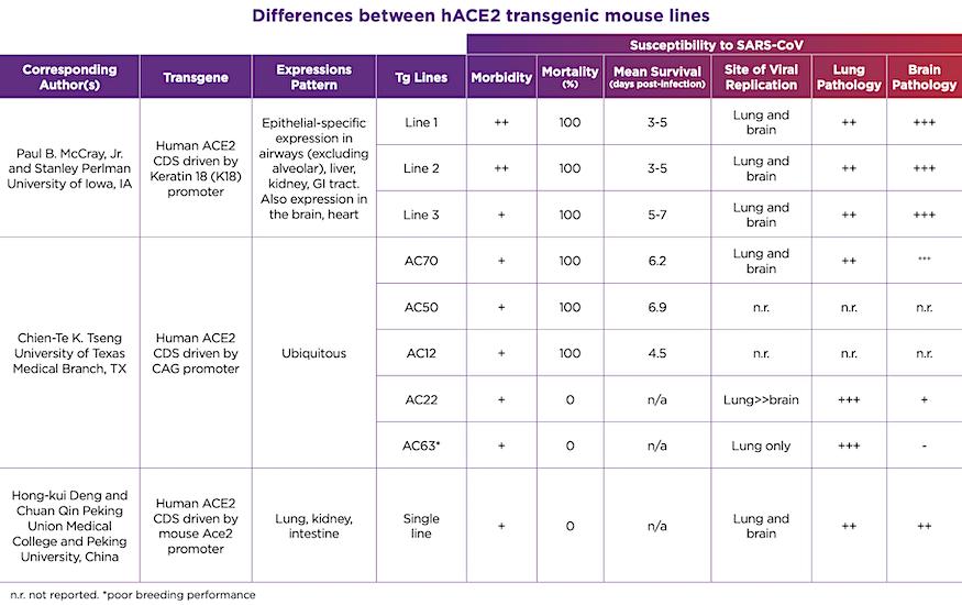 hACE2 Mice