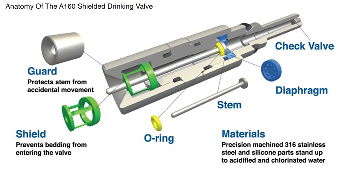 Edstrom industries (Avidity Science) automated Watering drinking Valve