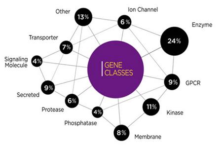 gene classes