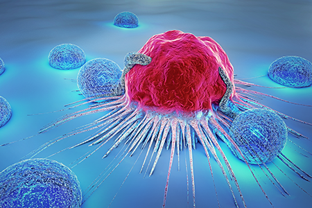 How Humanized Immune System Models Are Enhancing Biologics Drug Discovery