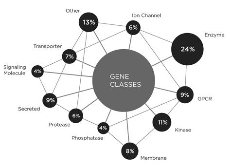 KOR Druggable Gene Classes