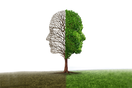 Tauopathy Alzheimer's Disease Models Yield Contrasting Results