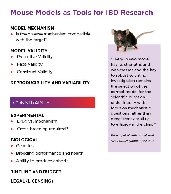 Mouse Models as Tools for IBD Research
