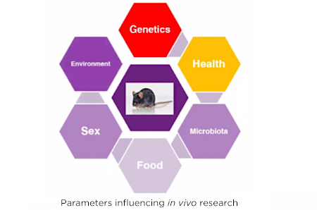 Parameters influencing in vivo research