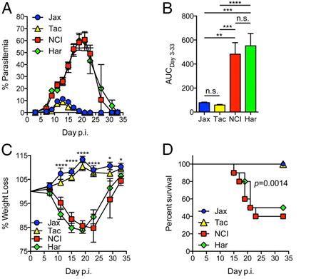 Composition of the gut microbiota modulates