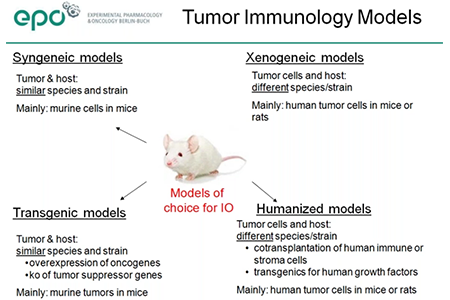 Webinar review: Patient-Derived Xenografts on Humanized Mice