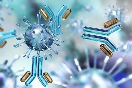 Virus and antibodies close up