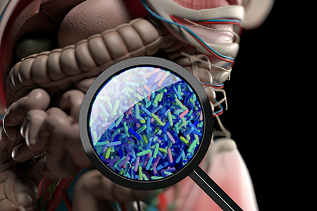 Webinar Review: How to Harness the Microbiome