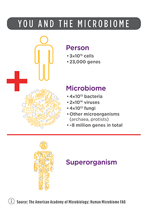 Introduction to Translational Microbiome Research Infographic